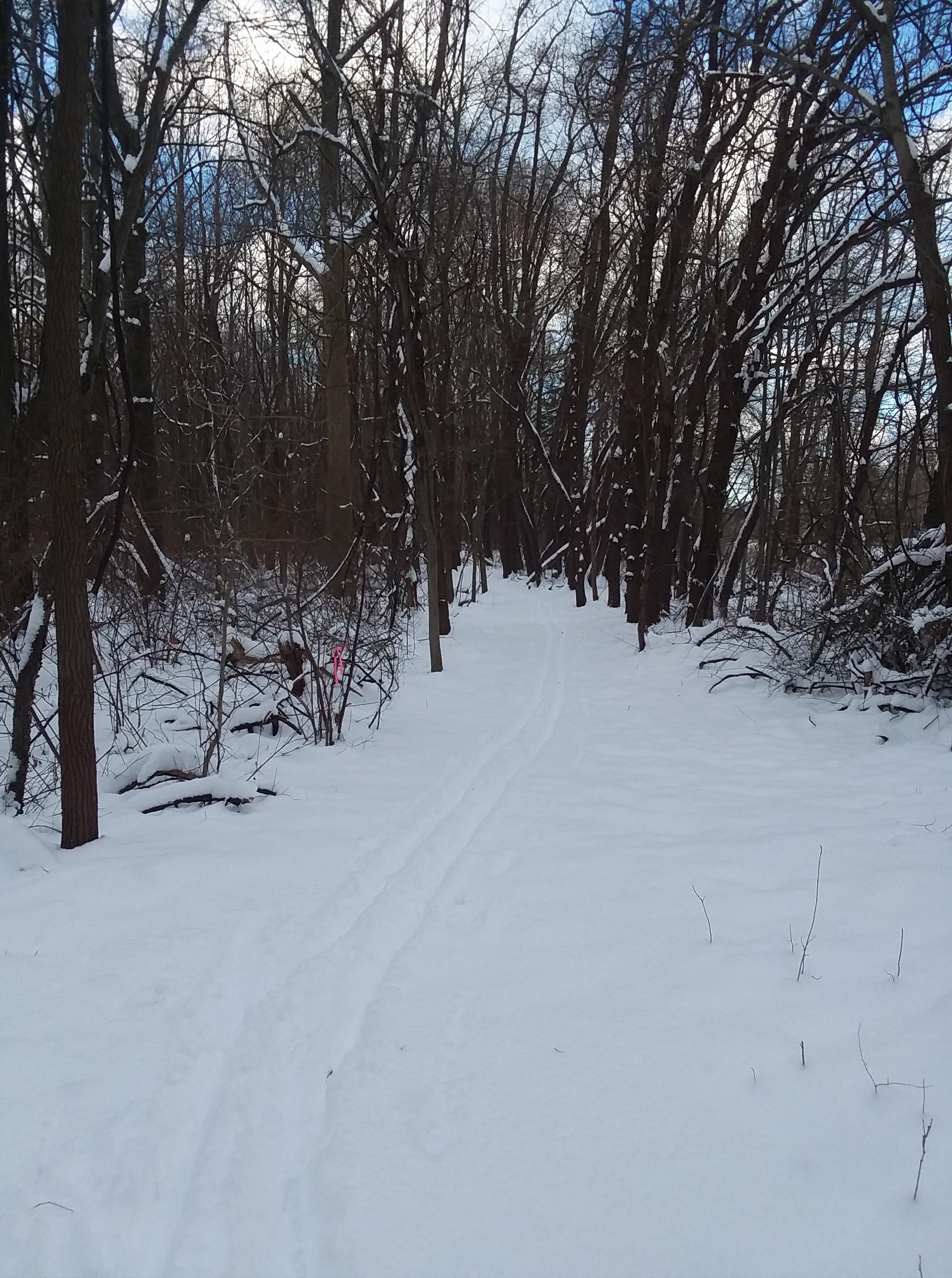 Ski Trails Xmas Day